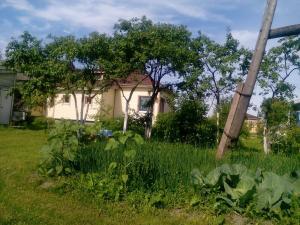Гостевой дом Раджа - фото 27