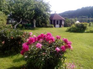 Гостевой дом Раджа - фото 24