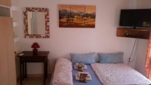 Villa Claudia, Ferienwohnungen  Povljana - big - 30