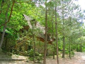 Antiguo Aserradero