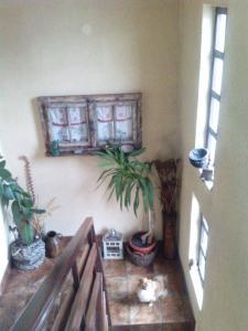 Rooms Elma - фото 18