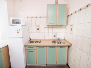 Aliance Apartment at Kirova 2, Ferienwohnungen  Krasnoyarsk - big - 8