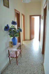 Casa Vacanza Anita, Апартаменты  Агрополи - big - 6