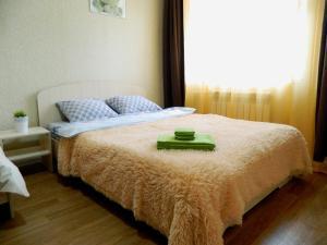 Апартаменты Домашние отели на Островского, Печора