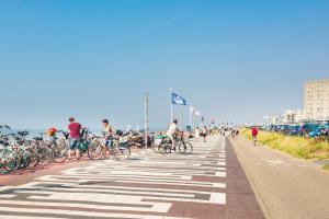 Cozy Bungalow for 2 Zandvoort(Zandvoort)