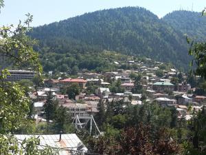 Borjomi Townhouse, Alex, Apartmány  Borjomi - big - 4