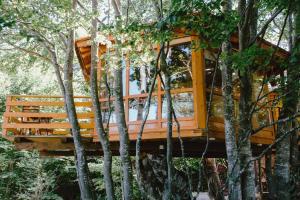 Treehouse Sarajevo