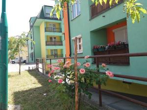 Apartman Šip