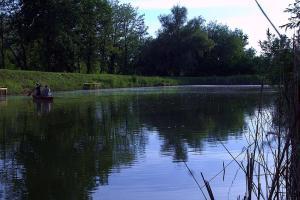 Vándor Vendégház és Horgásztó, Affittacamere  Gyügye - big - 9