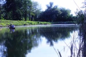 Vándor Vendégház és Horgásztó, Vendégházak  Gyügye - big - 5
