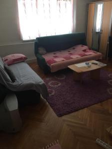 Guesthouse Srdic no.2 - фото 8