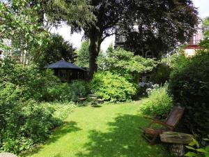 The Beech Tree Bed and Breakfast, Гронинген