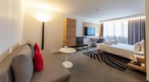 Представительский номер с 1 двуспальной кроватью и диваном