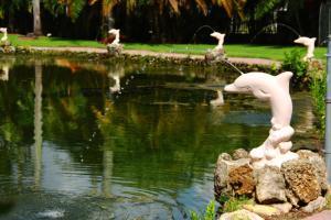 obrázek - Rock Lake Resort