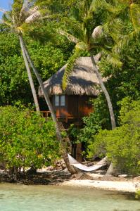 Sofitel Bora Bora Private Island, Hotely  Bora Bora - big - 28