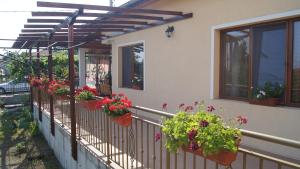 Country house on Stara Planina 26