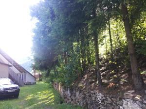 Hostel Kolochava