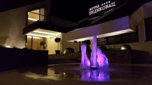 Hotel Vidikovac - фото 4