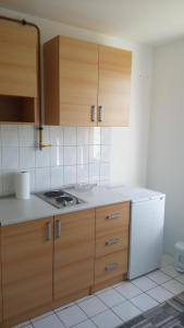 one-room apartment IRIS - фото 13