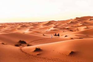 Riad Desert Camel, Hotels  Merzouga - big - 52