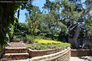 Mid-Zentury, Holiday homes  Carmel - big - 40