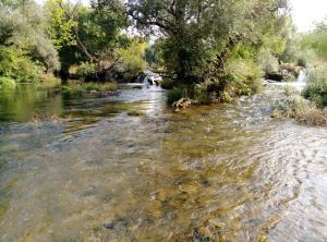 River House Buna - фото 23