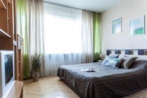 Apartment Moskovsky, Ferienwohnungen  Sankt Petersburg - big - 13