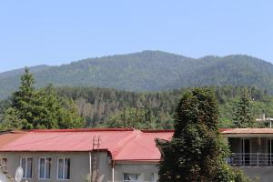 Apartment Komfort, Appartamenti  Borjomi - big - 7