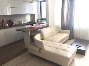 Andreea's Apartment, Апартаменты  Бухарест - big - 21