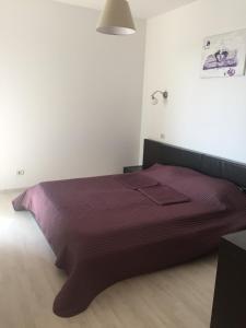 Andreea's Apartment, Апартаменты  Бухарест - big - 22