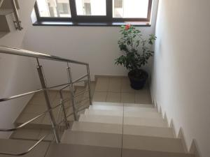 Andreea's Apartment, Апартаменты  Бухарест - big - 25