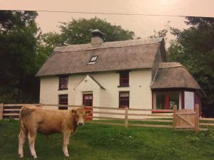 obrázek - Danloes Thatched Cottage