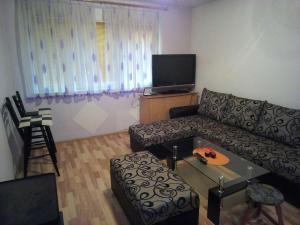 Apartman Dina - фото 1