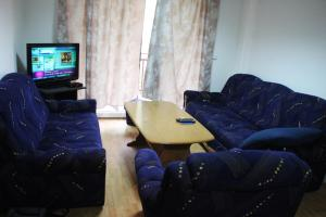 Apartments Zeko - фото 6