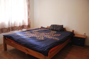 Apartments Zeko - фото 8