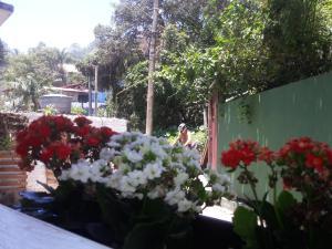 Hospedaria Bela Vista, Priváty  Florianópolis - big - 36