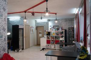 Apartment Catstory