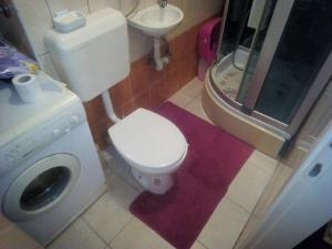 Apartman Dina - фото 13