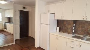 apartament gabriel, Apartmány  Târgu Jiu - big - 9