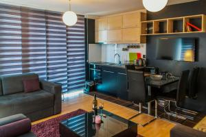 Studio Apartment Mila, Appartamenti  Kopaonik - big - 15