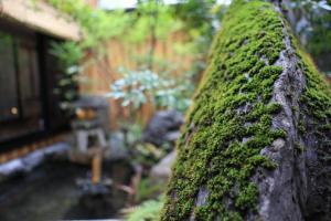 obrázek - HOSTEL WASABI Kyoto Machiya Soba