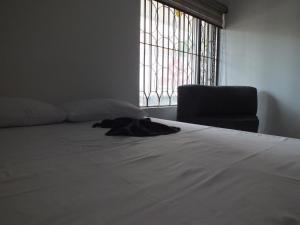 Hostal Casa Paraiso, Hostels  Medellín - big - 6