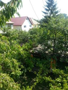 Sub Arini Park, Ferienwohnungen  Sibiu - big - 18