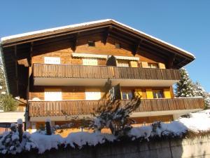 Chrinnengletscher, Apartments  Grindelwald - big - 1