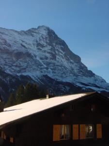 Chrinnengletscher, Apartments  Grindelwald - big - 3