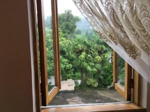 House Ana Kalandadze 31, Penzióny  Batumi - big - 12