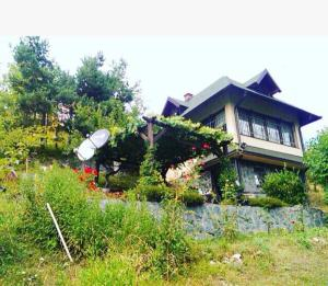 House in the nature