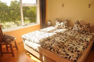 Relax a Lodge, Hostels  Kerikeri - big - 24