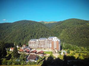 Maison Turquoise, Ferienwohnungen  Sinaia - big - 9