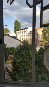 Apartment Papagajka - фото 22